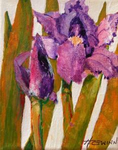Flower Boxd-Iris