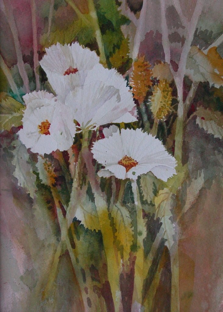 Several abstracted Desert Poppies in watercolor
